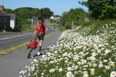 Counties evanglist Clive Cornish walks by some big bright roadside flowers - Clive approaching Haverfordwest with his cross