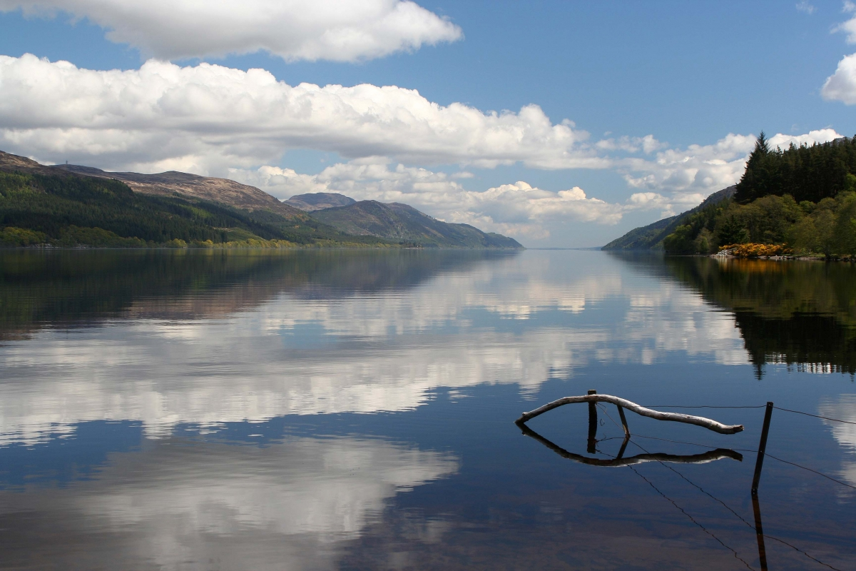 View down Loch Ness, Scotland. No sign of the Loch Ness monster but a tree branch and its reflection make the shape of the fish - a Christian symbol